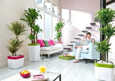 4 Tips Menjaga Kesejukan Rumah Saat Musim Panas
